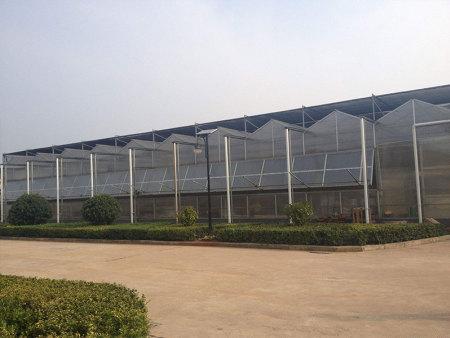 简易连栋薄膜温室建设-连栋薄膜温室公司推荐