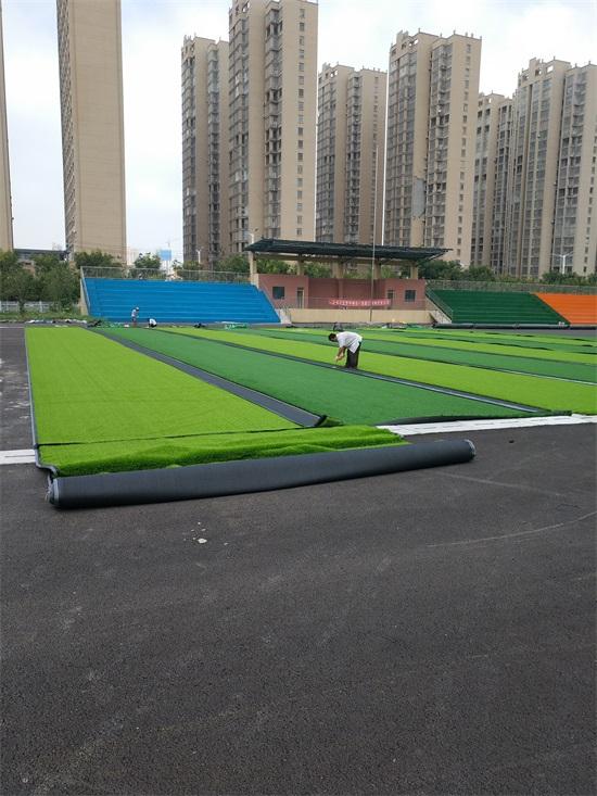芜湖市人造草坪生产厂家选华飞