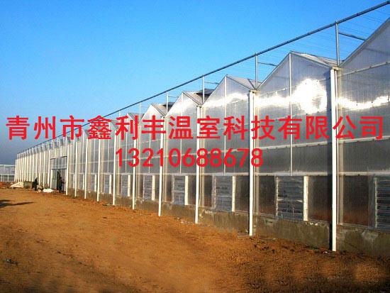 潍坊智能温室大棚专业建设——山东智能温室建设