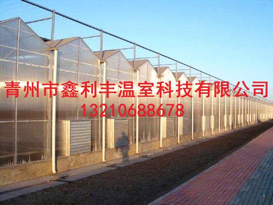葡萄连栋温室大棚公司推荐-内蒙古葡萄连栋温室大棚