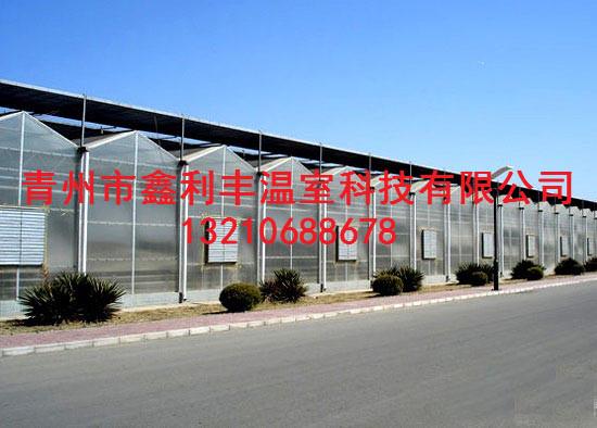 阳光板温室大棚建造厂家-阳光板温室大棚承建商
