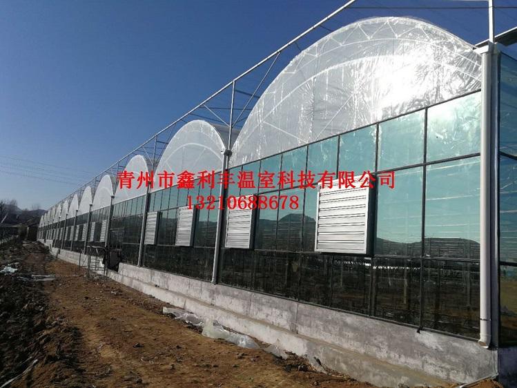 潍坊双拱双膜温室大棚哪家好|双拱双膜温室大棚建造公司