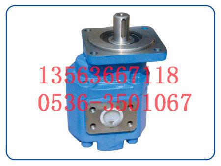 高压齿轮油泵_齿轮泵厂家直销