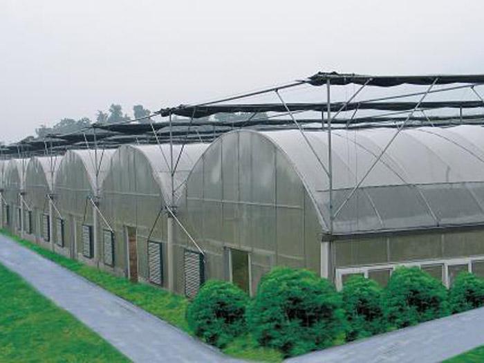 辽宁连栋温室工程――薄膜连栋温室就选聚暖温室工程