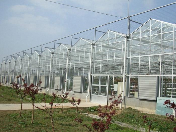 陕西智能温室工程-潍坊玻璃温室造价怎样