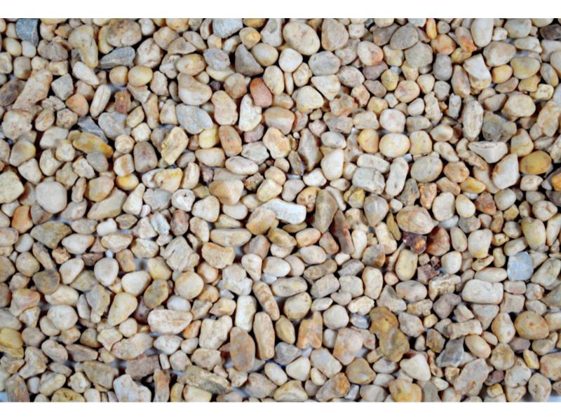 石米价位|福建口碑好的石米供应