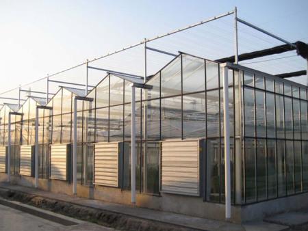 深圳智能温室建设_山东好用的智能温室