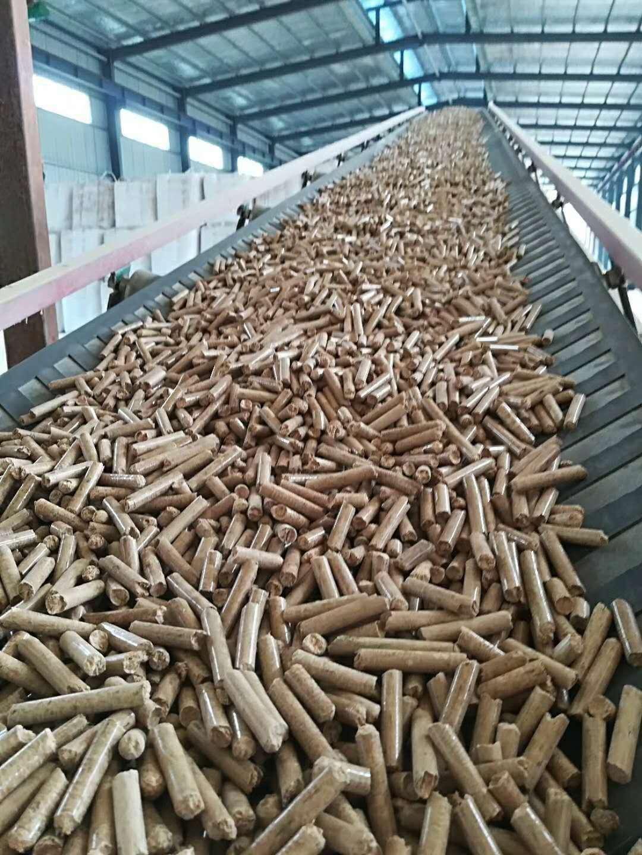 河西生物质颗粒燃料-河北高性价木屑颗粒