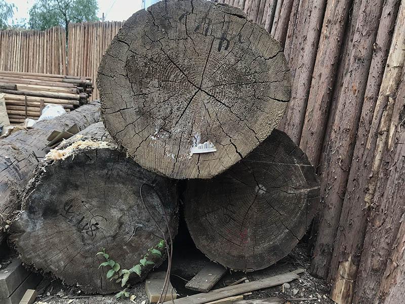 甘肅方木加工,優質的木材公司