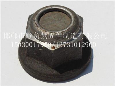 顺贸紧固件——专业的扭力螺母提供商|锚杆扭力螺母