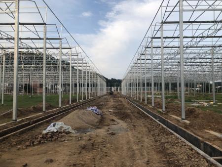 智能温室骨架报价-想买销量好的智能温室骨架,就到叁圣农业技术服务