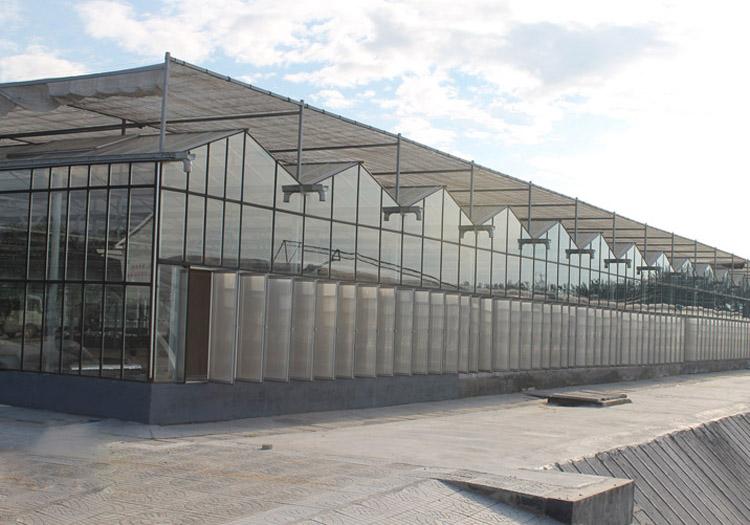 青州连栋温室建设-山东报价合理的连栋温室