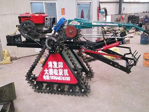 大姜收获机-神农农业机械质量可靠的大姜收获机出售