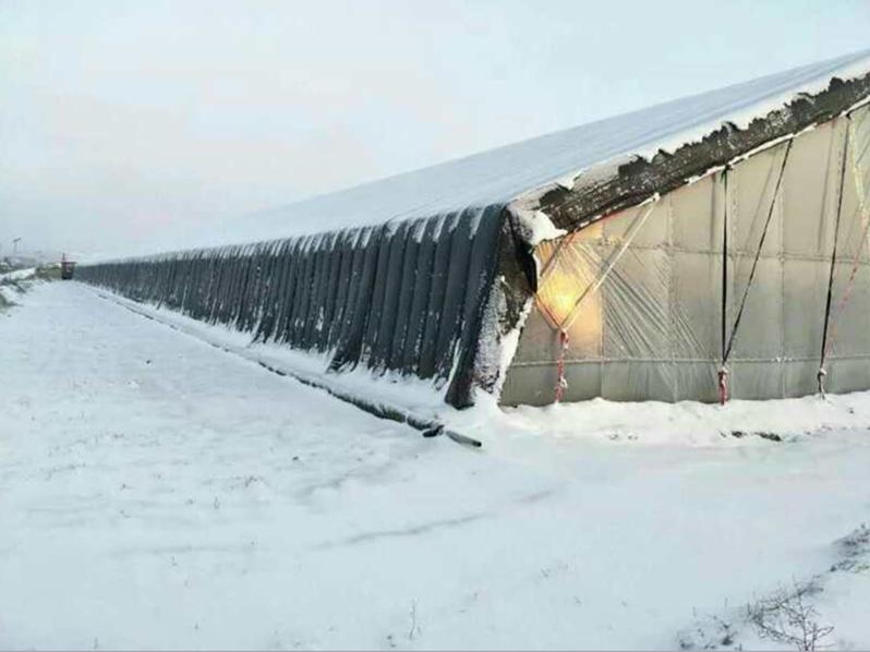 好的貴州防雪大棚棉被市場價格 防雪保溫被