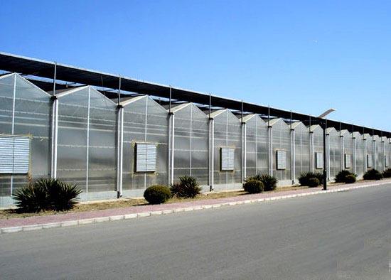 建智能温室大棚要多少钱|寿光智能温室大棚建设