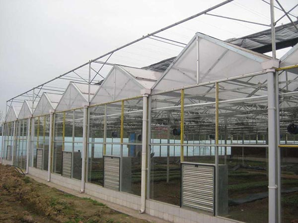 青州智能温室-山东称心的智能温室大棚