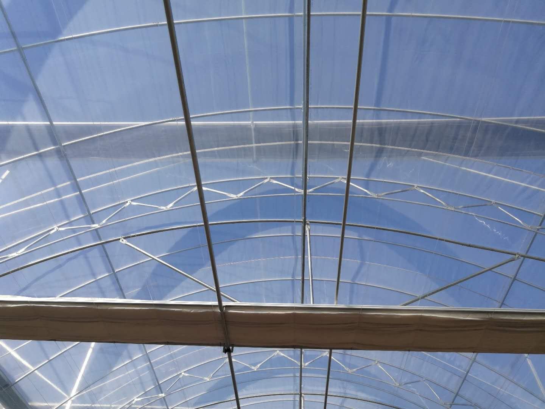双拱双膜温室大棚