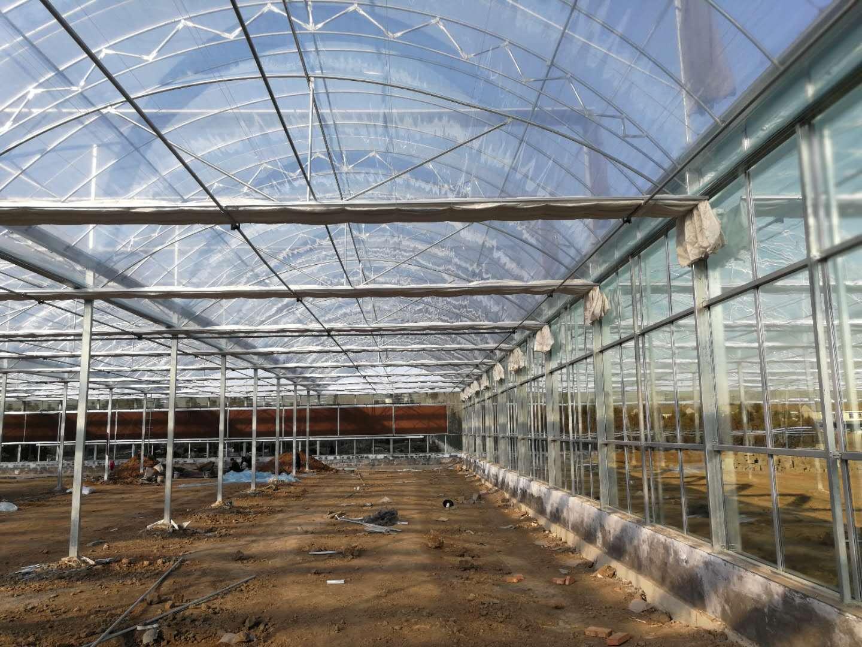 双拱双膜温室大棚建设|山东效果好的双拱双膜温室大棚