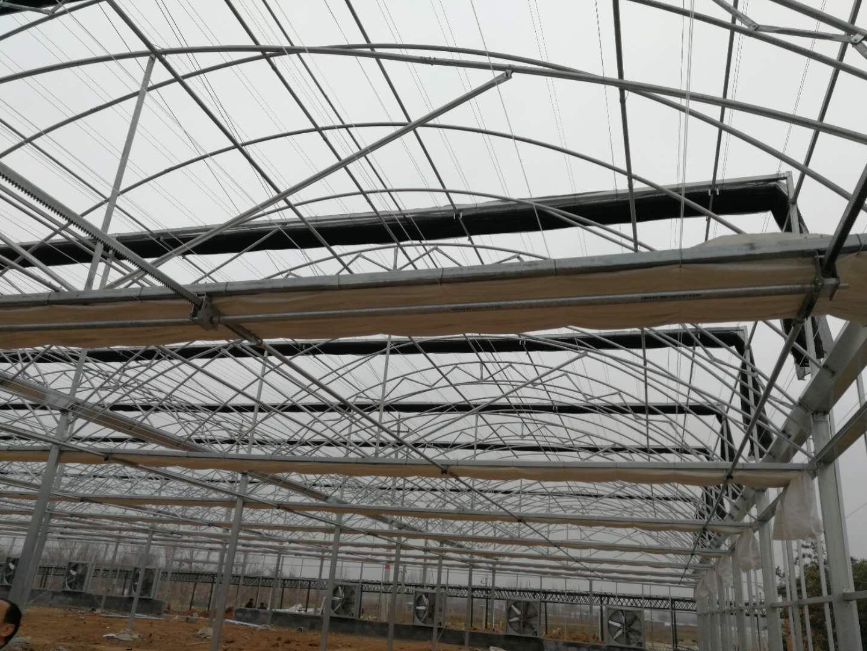 双拱双膜温室大棚-山东创新型的-双拱双膜温室大棚
