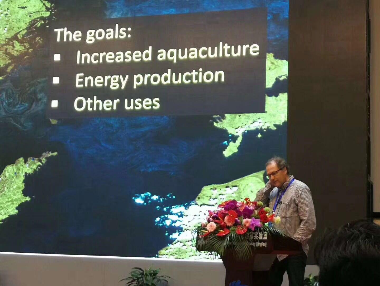 广州净化生蚝|贝拉水产供应划算的生蚝