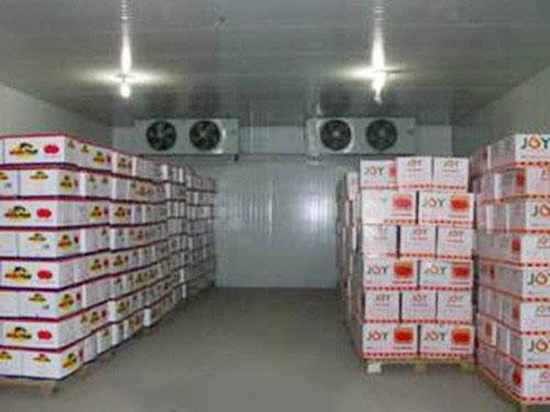 淇淋制冷设备_口碑好的海鲜冷库设备提供商|湛江海鲜冷库安装