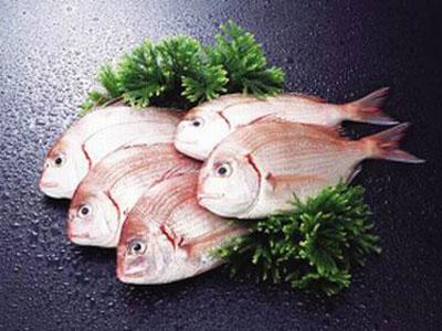 松山湖冻肉批发,物超所值的冻肉推荐