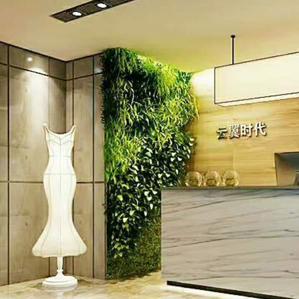 仿真植物墙批发 性价比高的仿真植物墙就在绿阁工艺