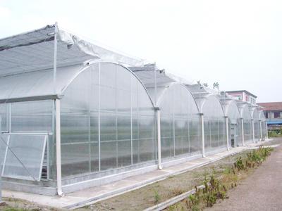 连栋温室工程建设
