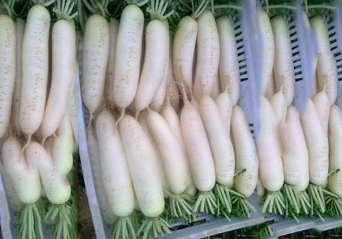 佛山物超所值食堂蔬菜配送_禅城工厂蔬菜配送