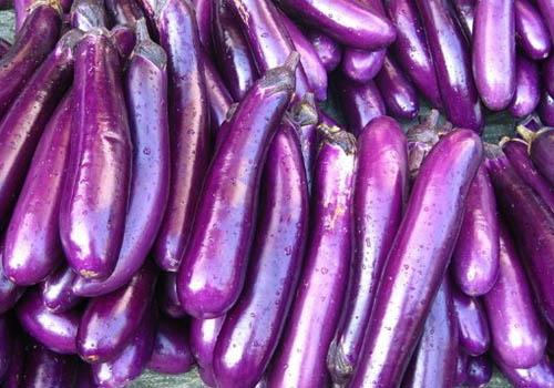 佛山哪里有提供可靠的食堂蔬菜配送――九江蔬菜配送公司