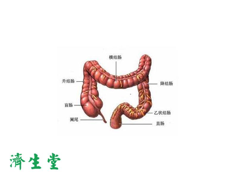 中医治胃病