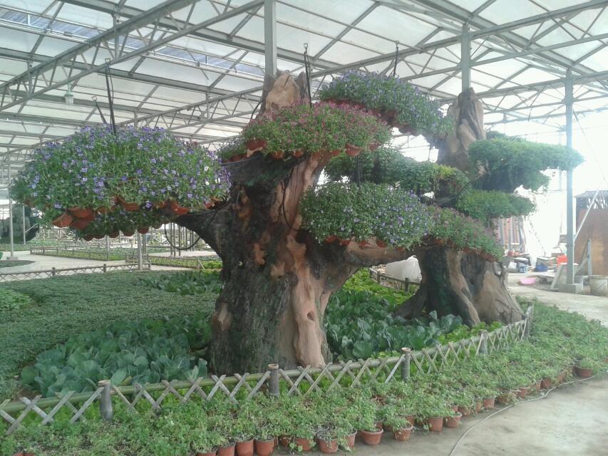 生態景觀農業園規劃,農業生態園區建造,農業生態園區