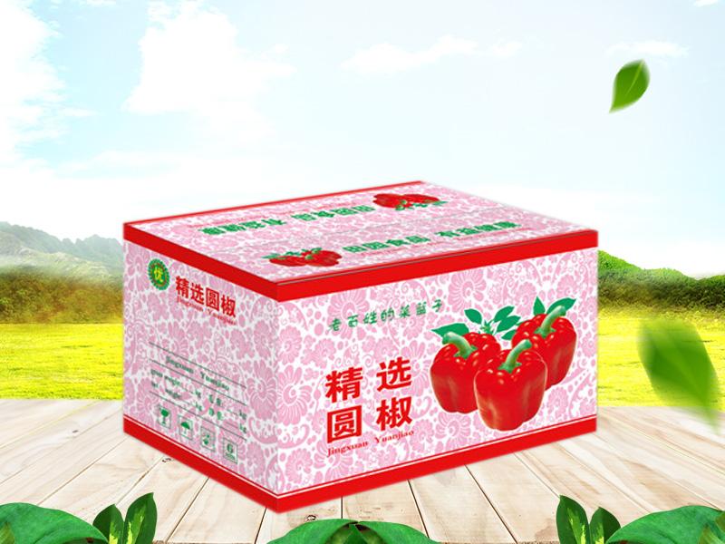 蔬菜专用纸箱价格|潍坊优良蔬菜专用纸箱供应商
