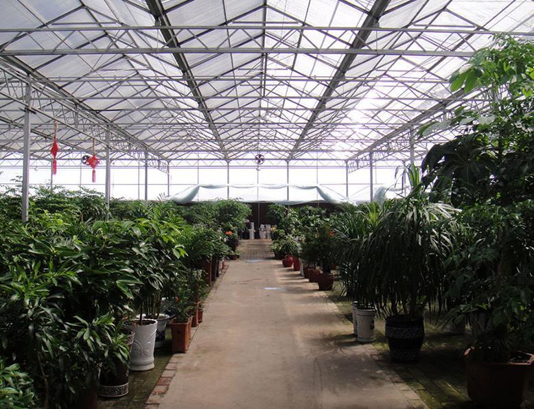 智能阳光板温室大棚建设 连栋阳光板温室 温室大棚建设官网