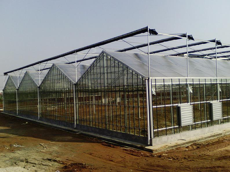 温室大棚设计-潍坊温室大棚厂家