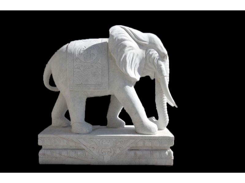 动物石雕厂家-泉州销量好的动物石雕