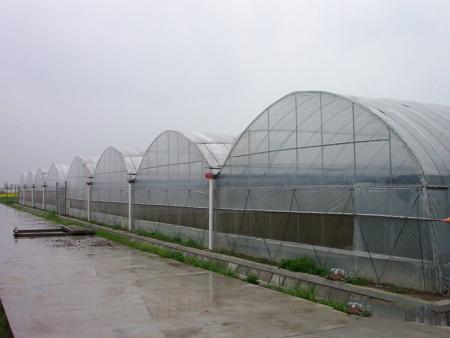承建智能養殖溫室//智能養殖溫室工程
