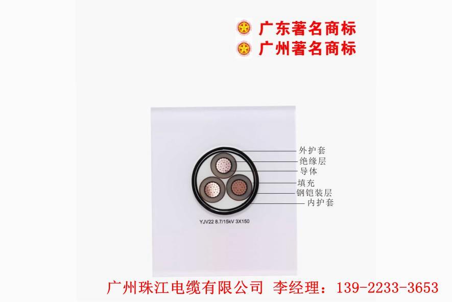 电线公司,特种电线电缆,南洋电缆推荐广州珠江电缆有限公司