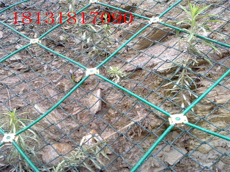 防护网厂商代理-诚心为您推荐衡水地区有品质的山体滑坡防护网