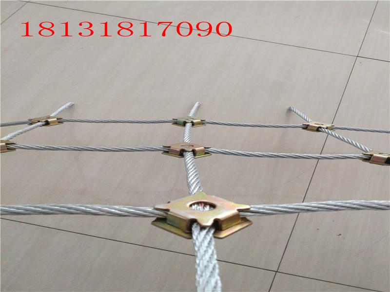防护网厂商_河北可靠边坡防护网批发