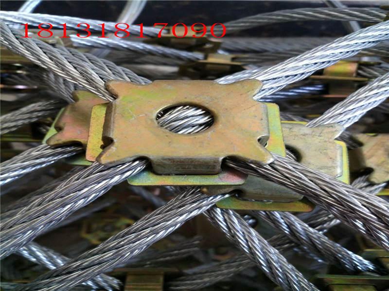 哪里有钢丝绳网_衡水提供高品质的柔性钢丝绳网