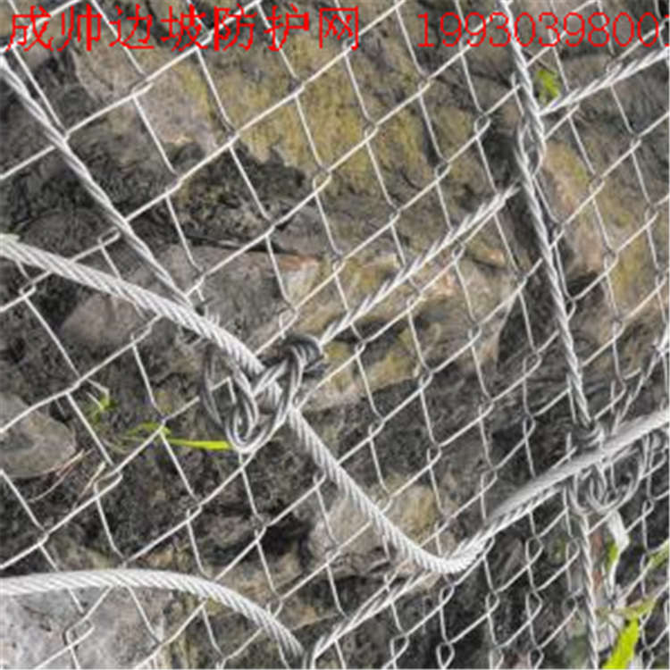 GPS2边坡防护网价格如何-衡水提供耐用的边坡防护网