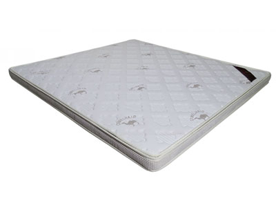 三明床垫批发-供应物超所值的床垫