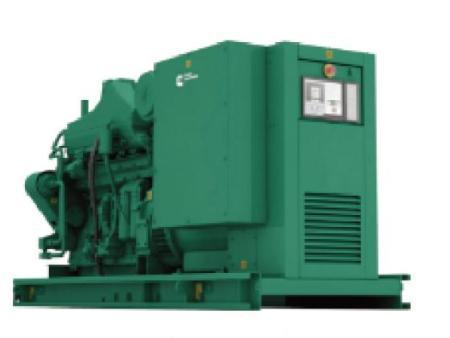 沼气发电机组厂家-专业沼气发电机组厂家
