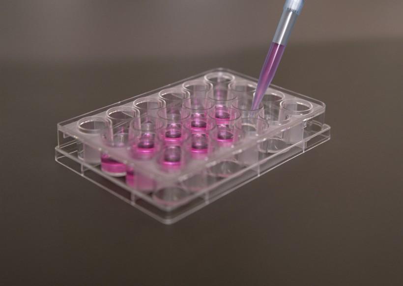 宁夏反渗透阻垢剂生产厂家就选-银川佳士洁生物科技-化学试剂