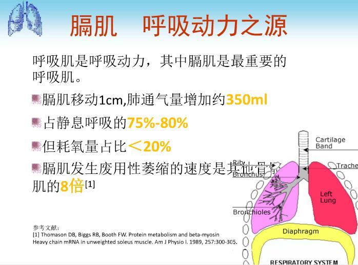 济南膈肌起搏器价格如何|厂家直销体外膈肌起搏器推荐