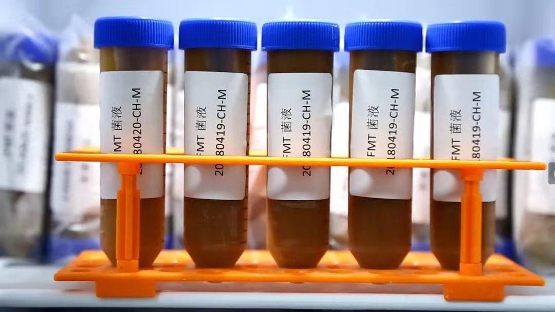 粪菌菌液胶囊