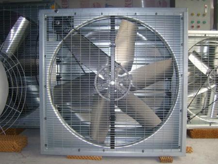 种植负压风机-博亚机械ag亚官网app|优惠供应价位合理的负压风机