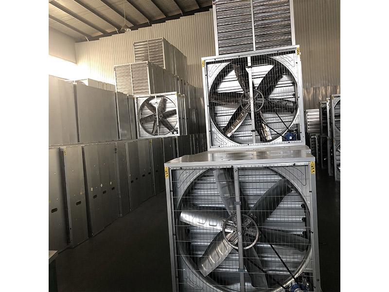 大功率排风扇-潍坊价格合理的排风扇哪里买