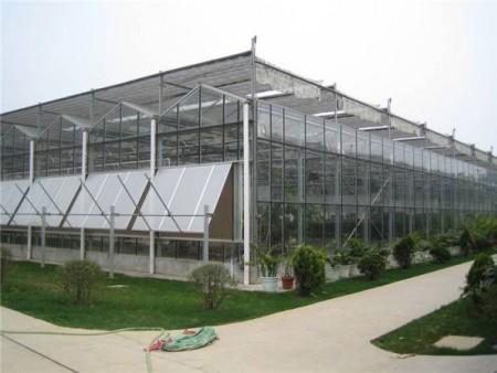 玻璃板溫室